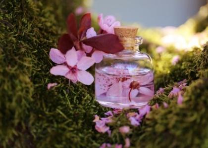 Flora thérapie SOS